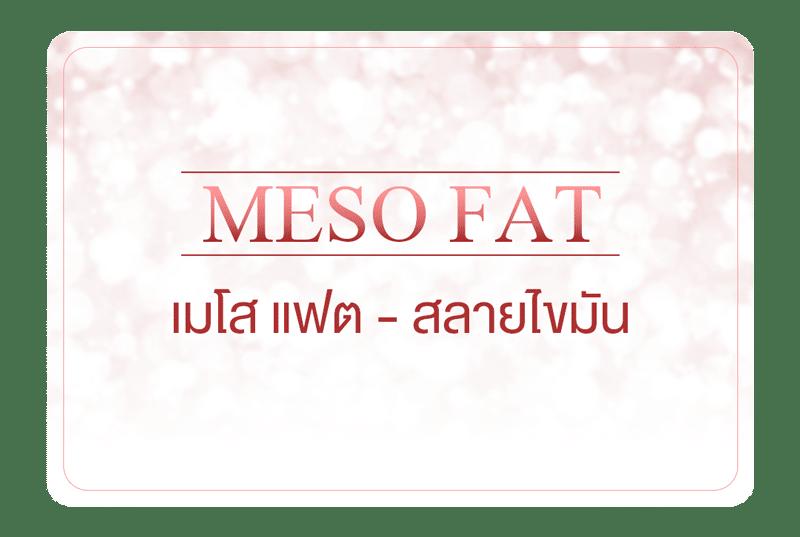 เมโสแฟต สลายไขมัน – Meso Fat