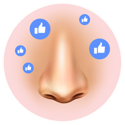 icon-nose-reconstruction-020